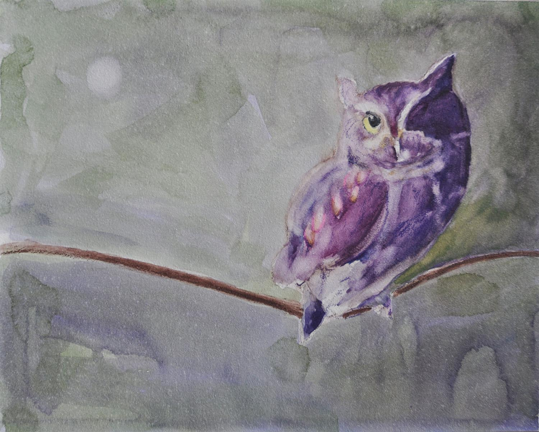 Owl--for website--smaller file to load faster.jpg