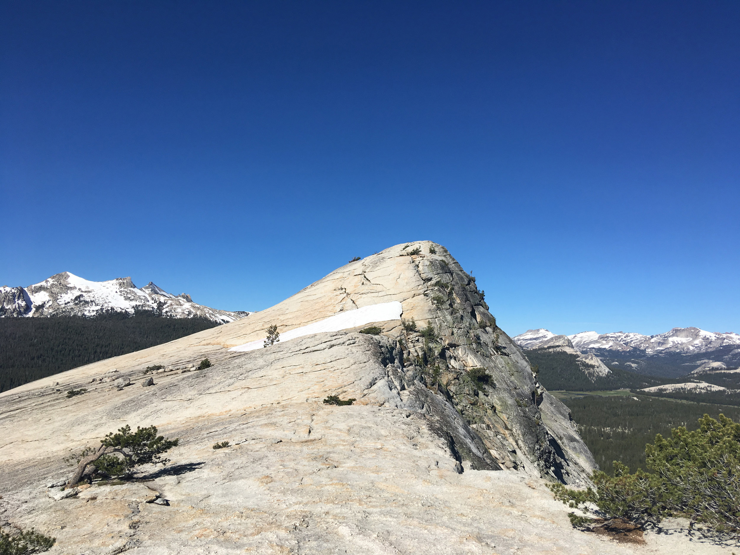 Lembert Dome - July 2019 - The approach to the top of Lembert Dome. Tuolumne Meadows can be seen in the background