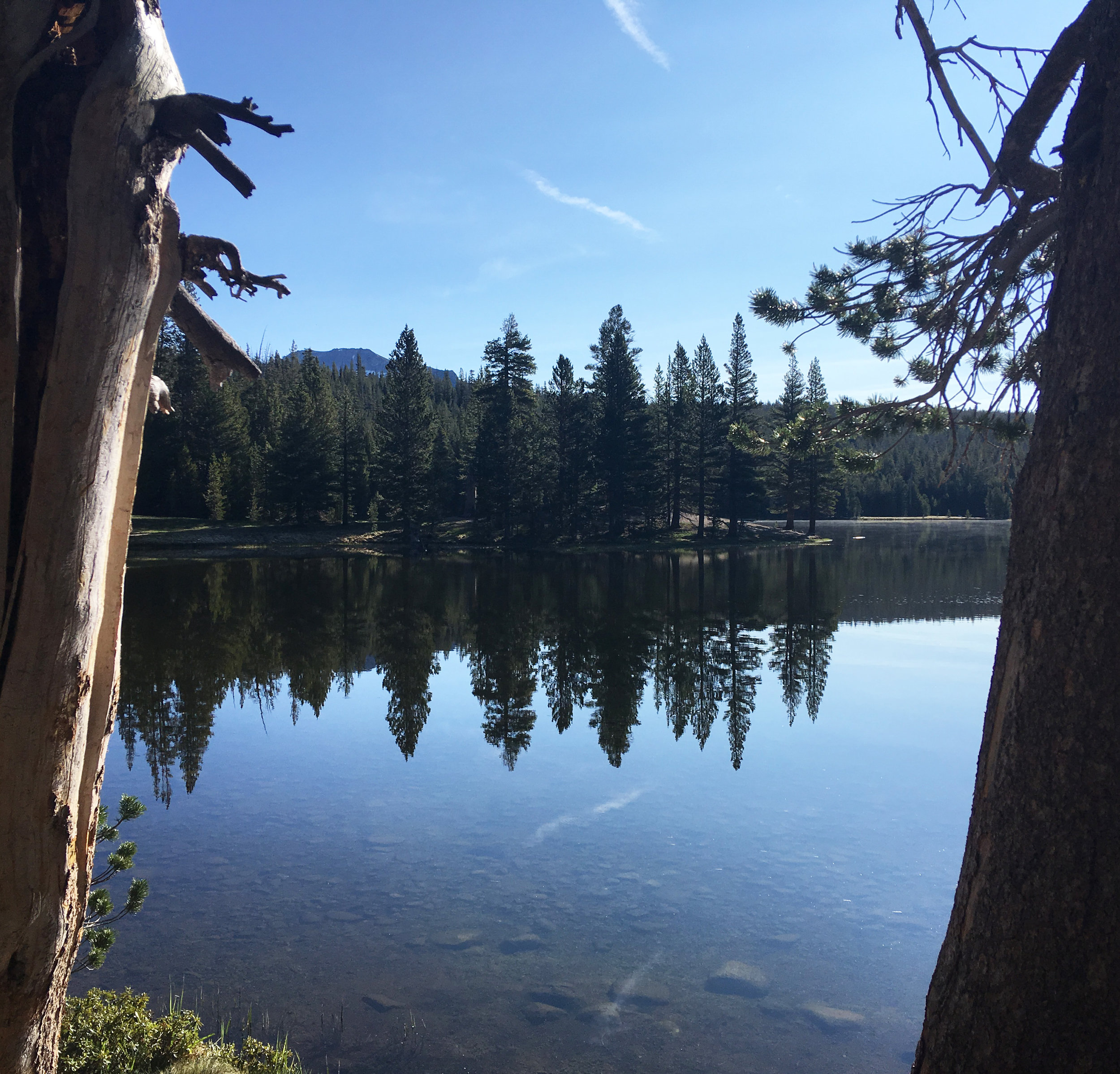 Dog Lake - July 2019 - As viewed after an early morning hike with no other visitors around