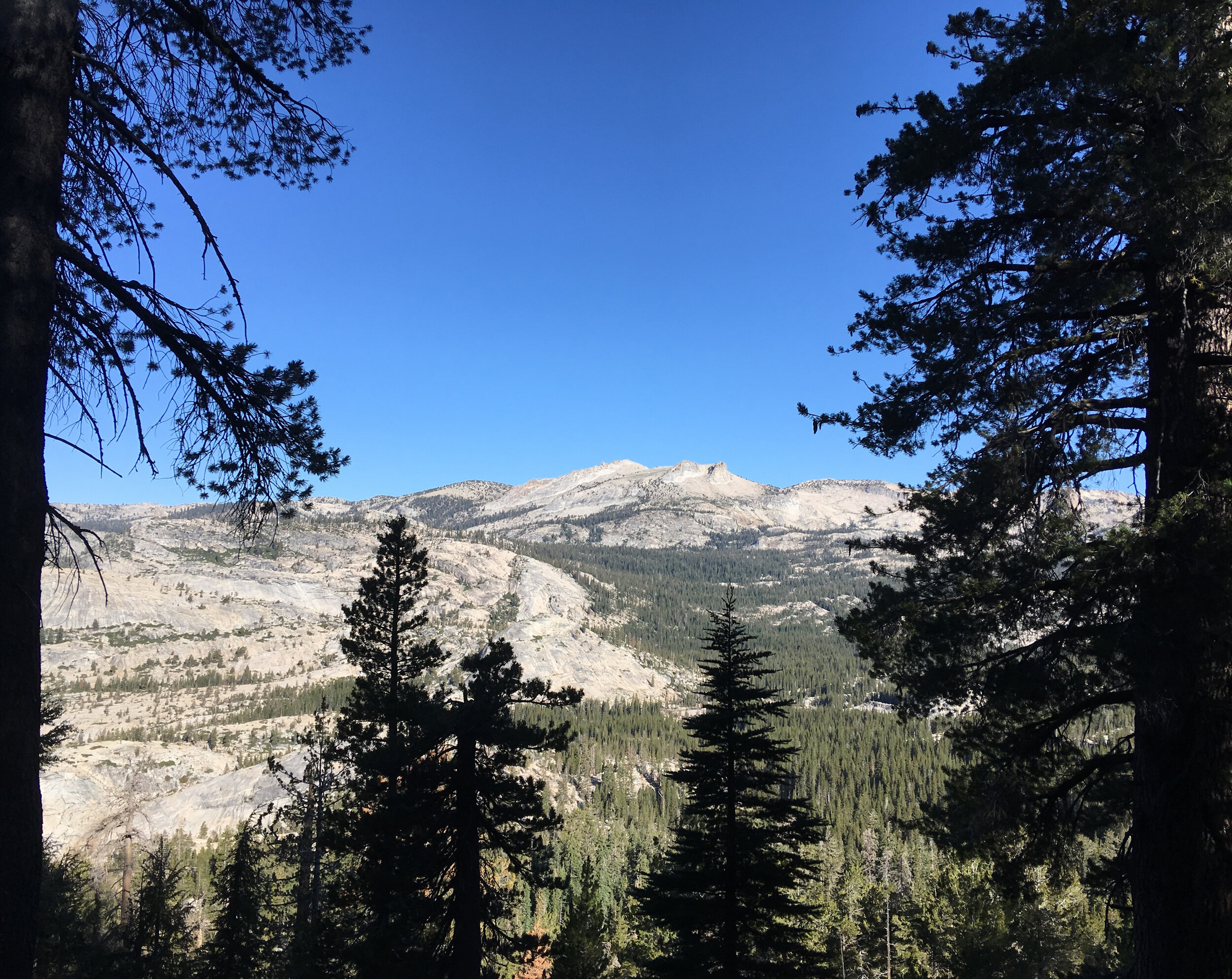Mount Hoffman - September 2019 - As viewed from the trail to Clouds Rest