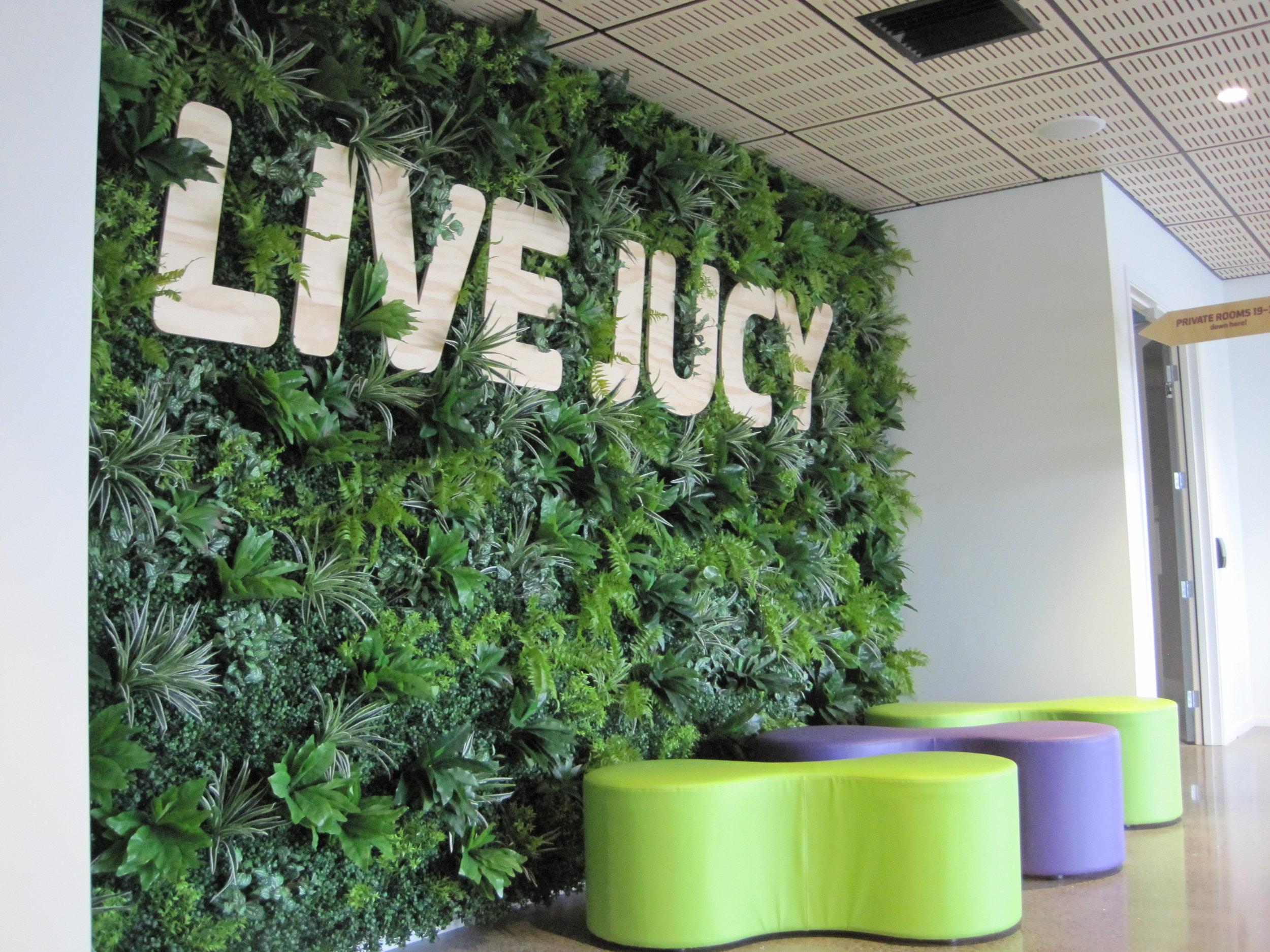 Jucy Snooze Lobby Green Wall