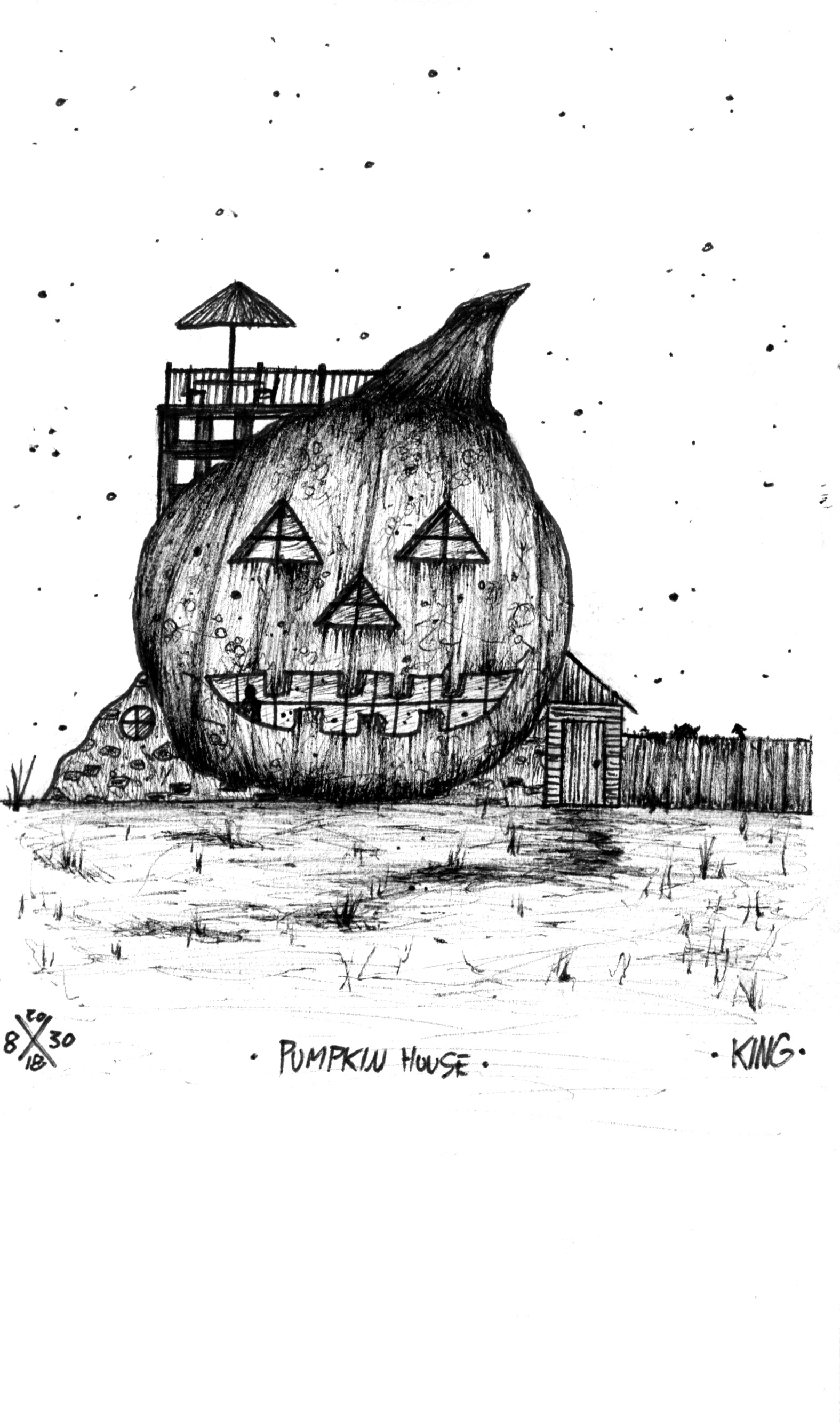 CASEY KING ART PUMPKIN HOUSE.jpg