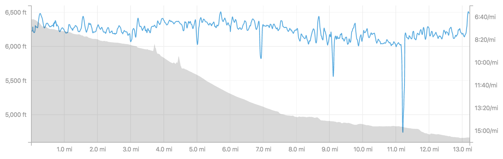 Course elevation and my pace overlay.