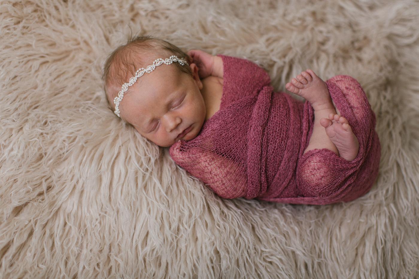 winter haven newborn photographer