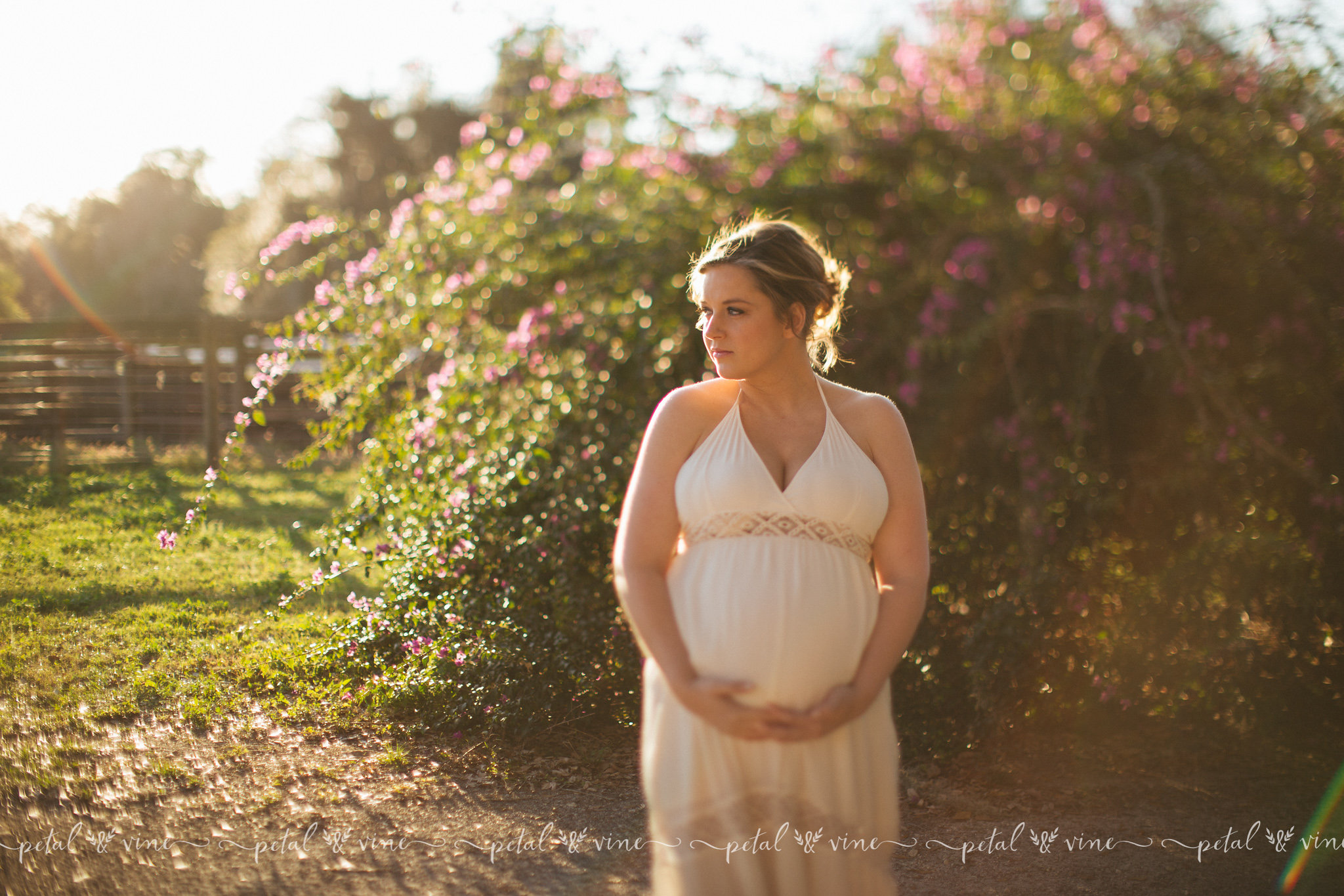 Davenport Maternity Photographer