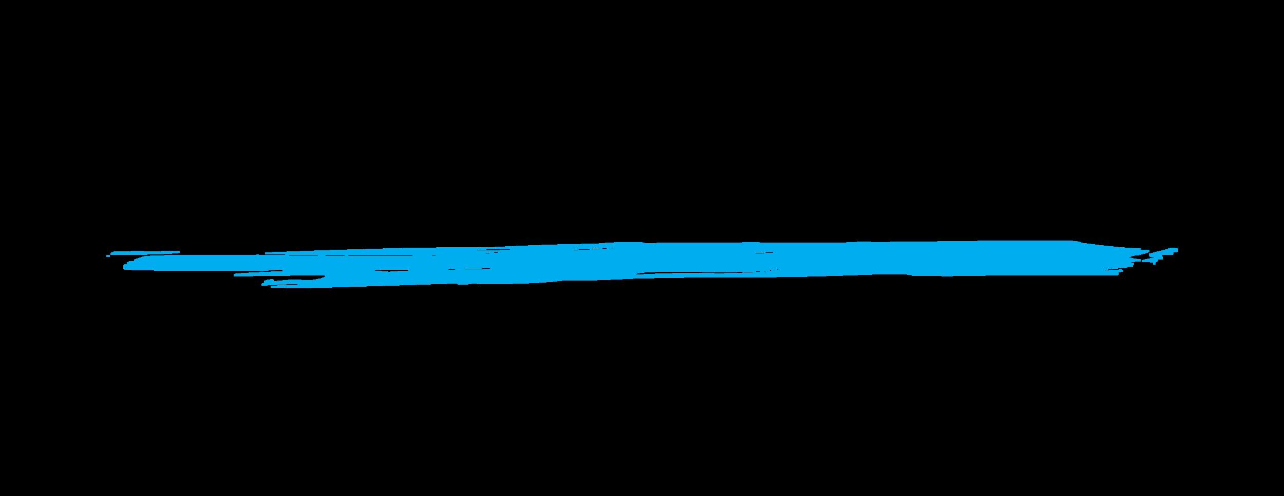 SII Logo_RGB_2017.png