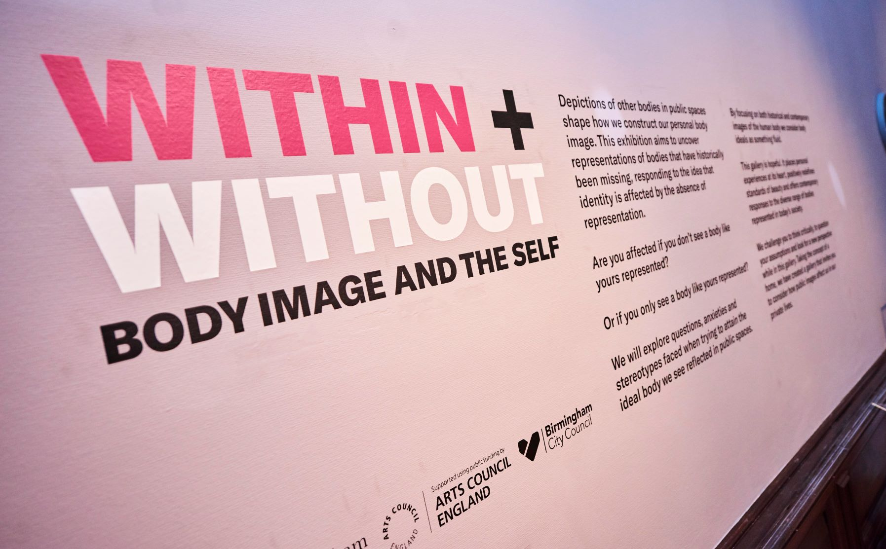 BMAG - Body Image Within and Without  (3).jpg