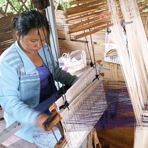 SHAN REFUGEE ARTISAN MICROBUSINESS - SUPPLIES  Suggested Gift: $35   $35 provides funding for Shan women to develop their own small business  through micro-financing programs.