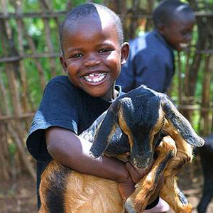 UGANDA LIVESTOCK MICROBUSINESS - GOAT  Suggested Gift: $100   This gift gives an  impoverished family in Uganda    an ongoing source of nutrition and supplemental income.