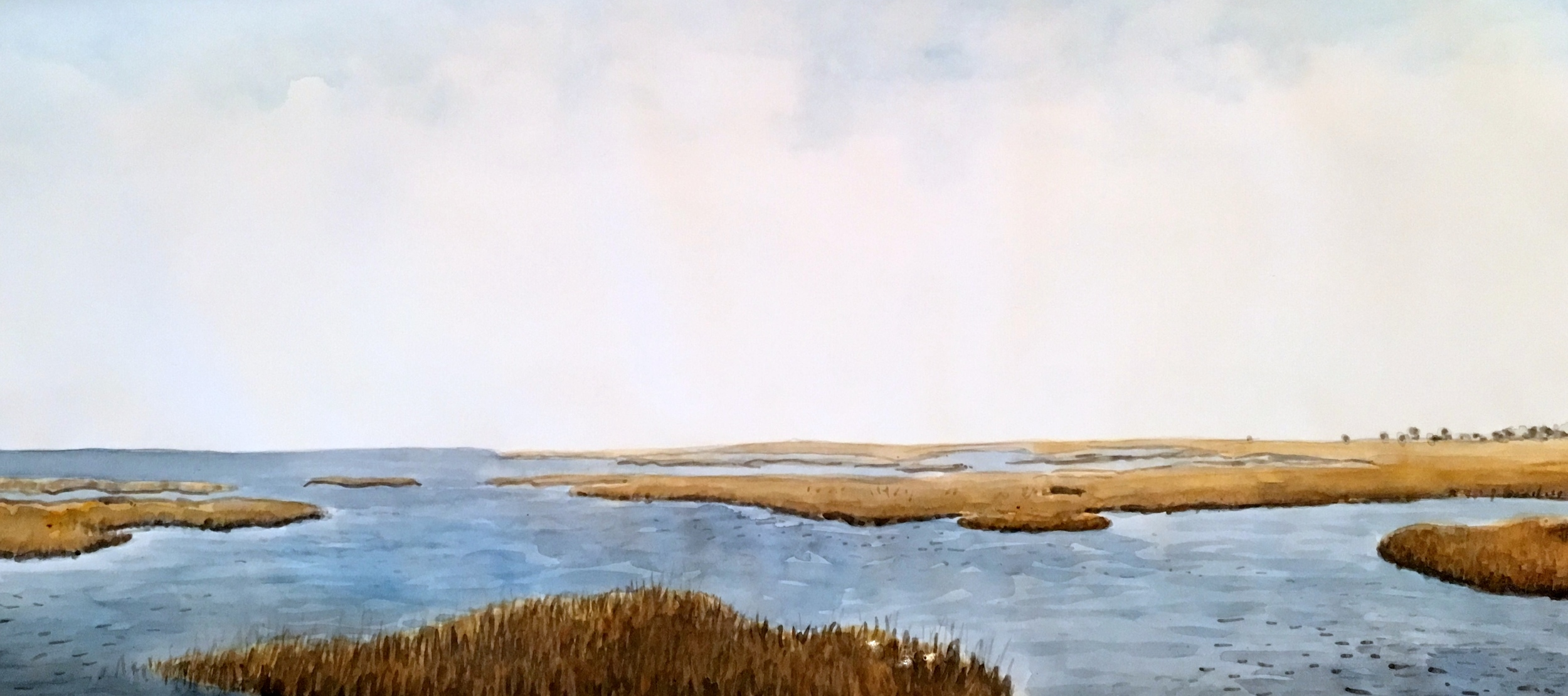 Peaceful Estuary