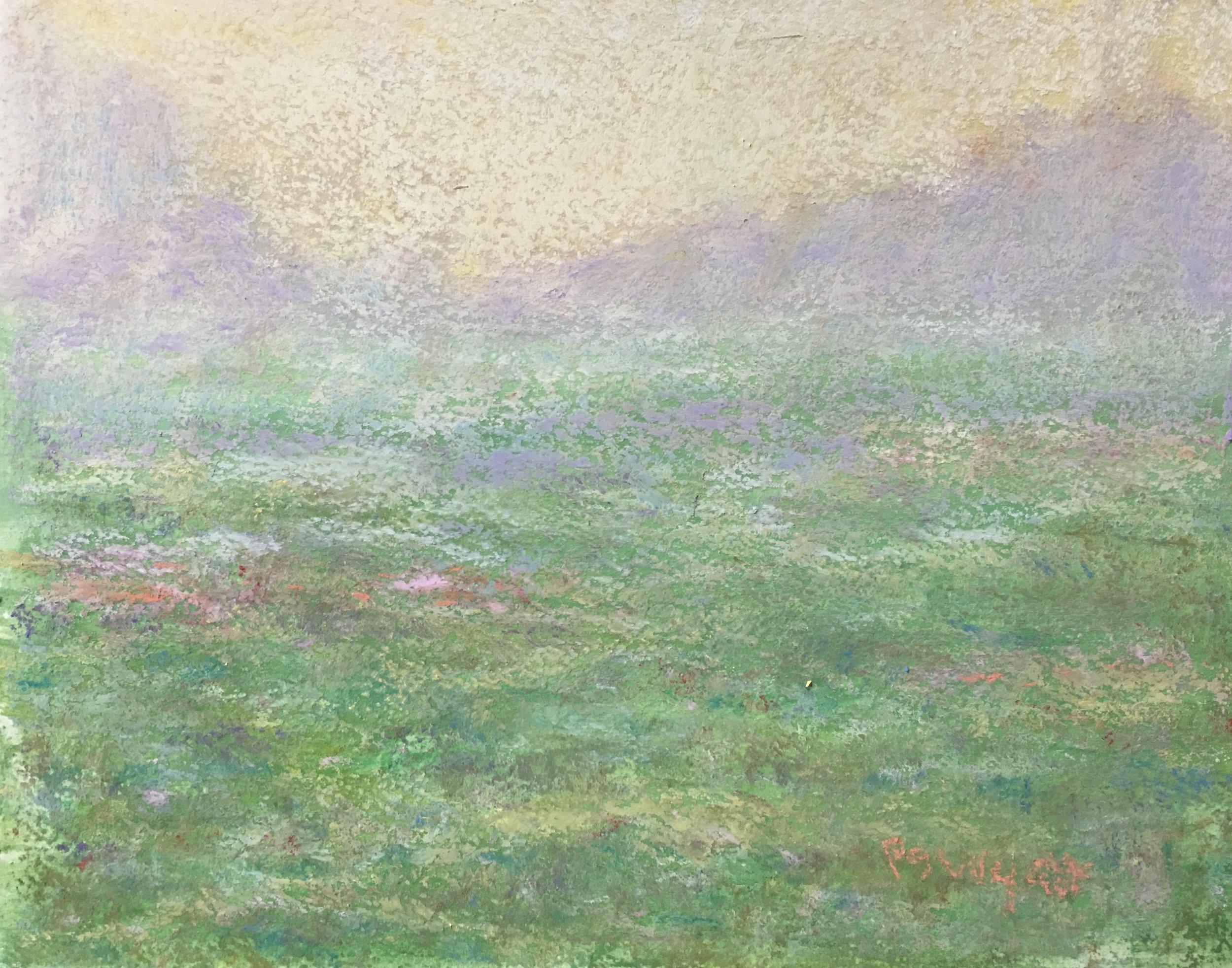 Spring Morning Mist