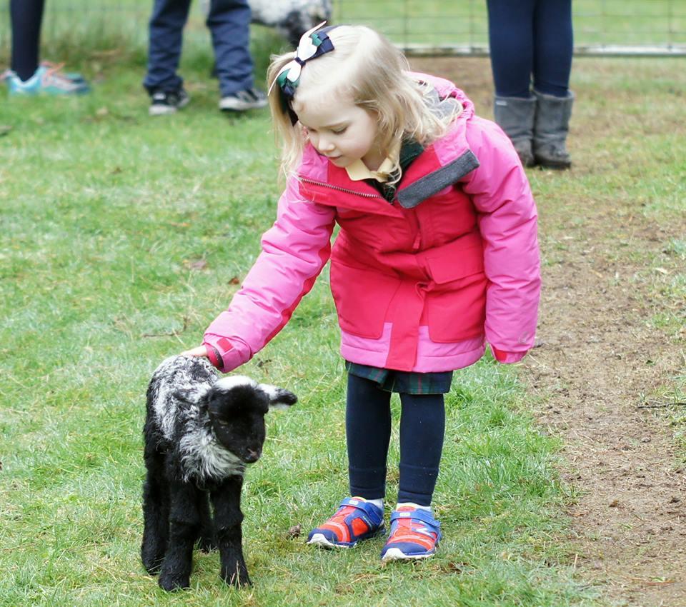 Nora with Lamb.jpg