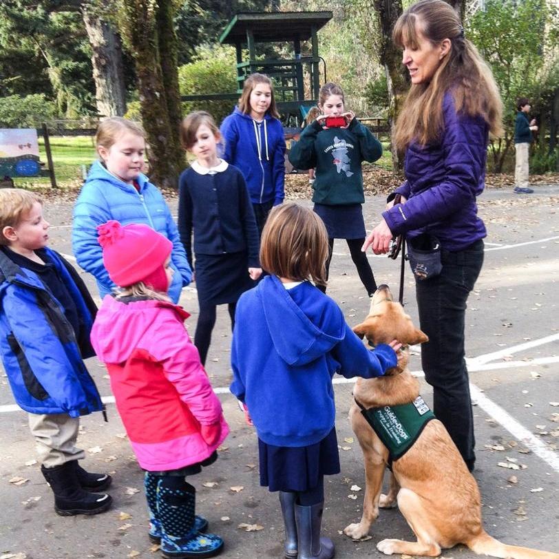 Animal Training and Behavior