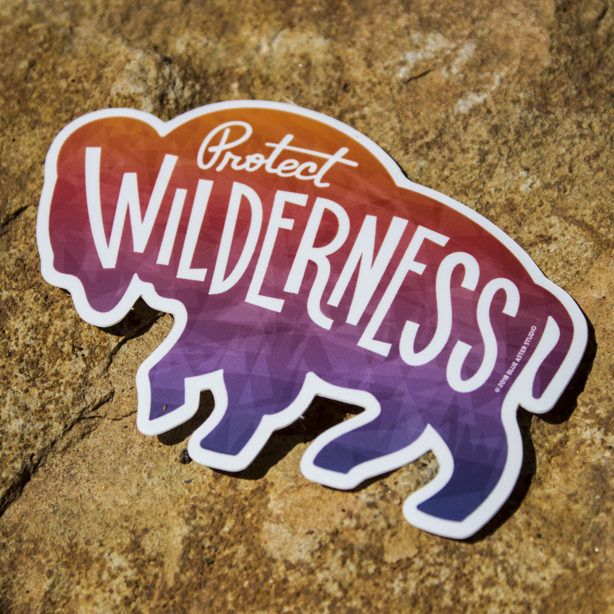 Wilderness_Bison.jpg