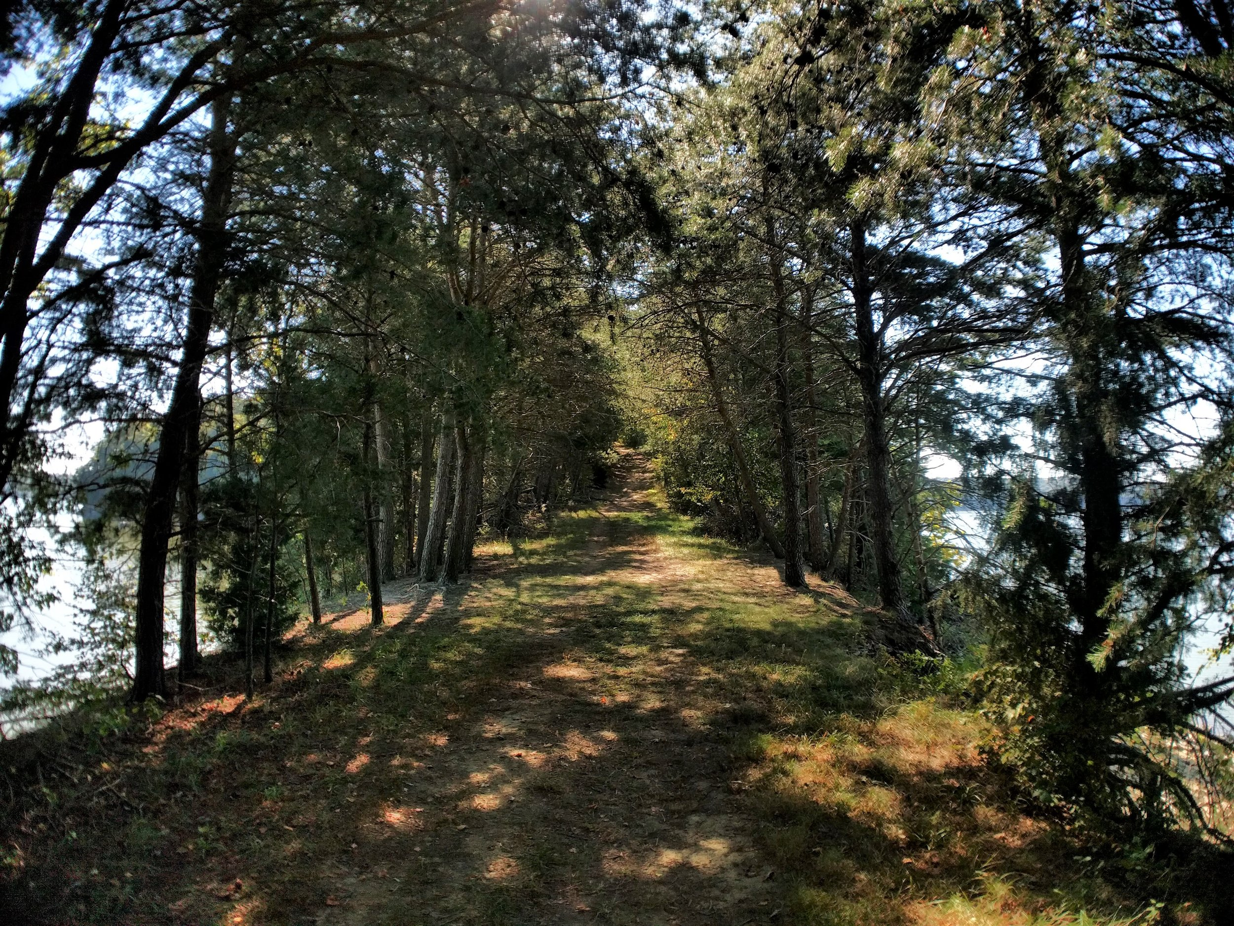 peninsula hike.jpg