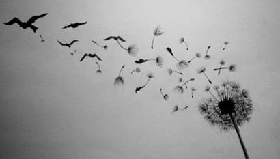 wishes in flight
