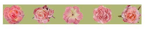 flower_divider_by_minecr_aft-dbx11uz.png
