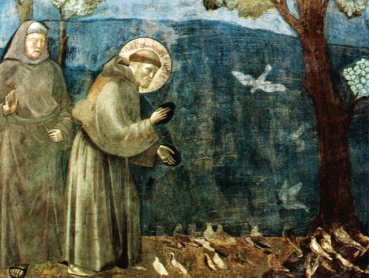 St. Francis Preaching to the Birds,  Giotto