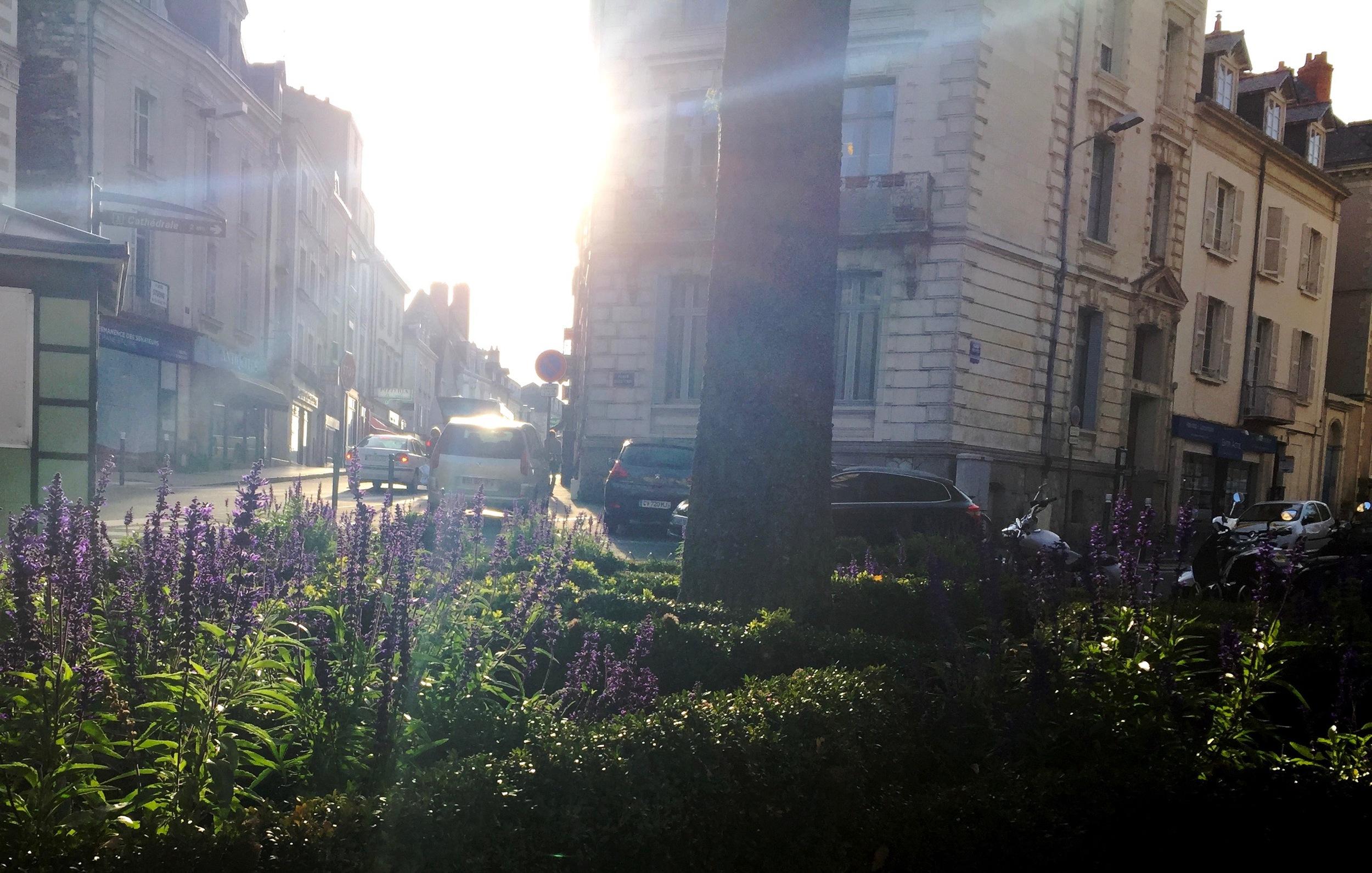 Light Breaking Through, Angers