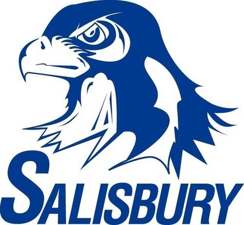 Saisbury Township School District.jpg