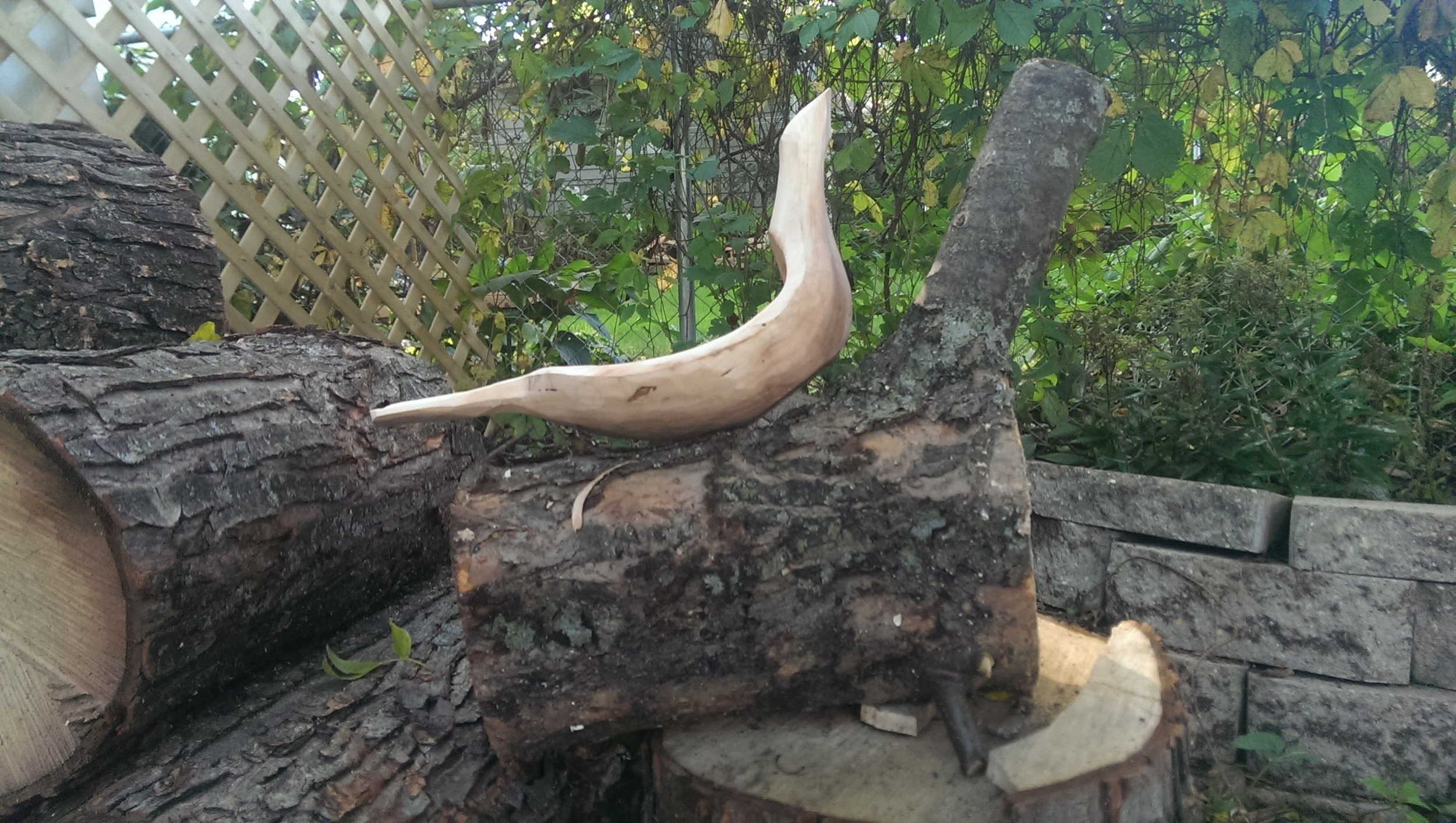 An almost finished bird bowl, sitting atop a log ready to become another bird bowl