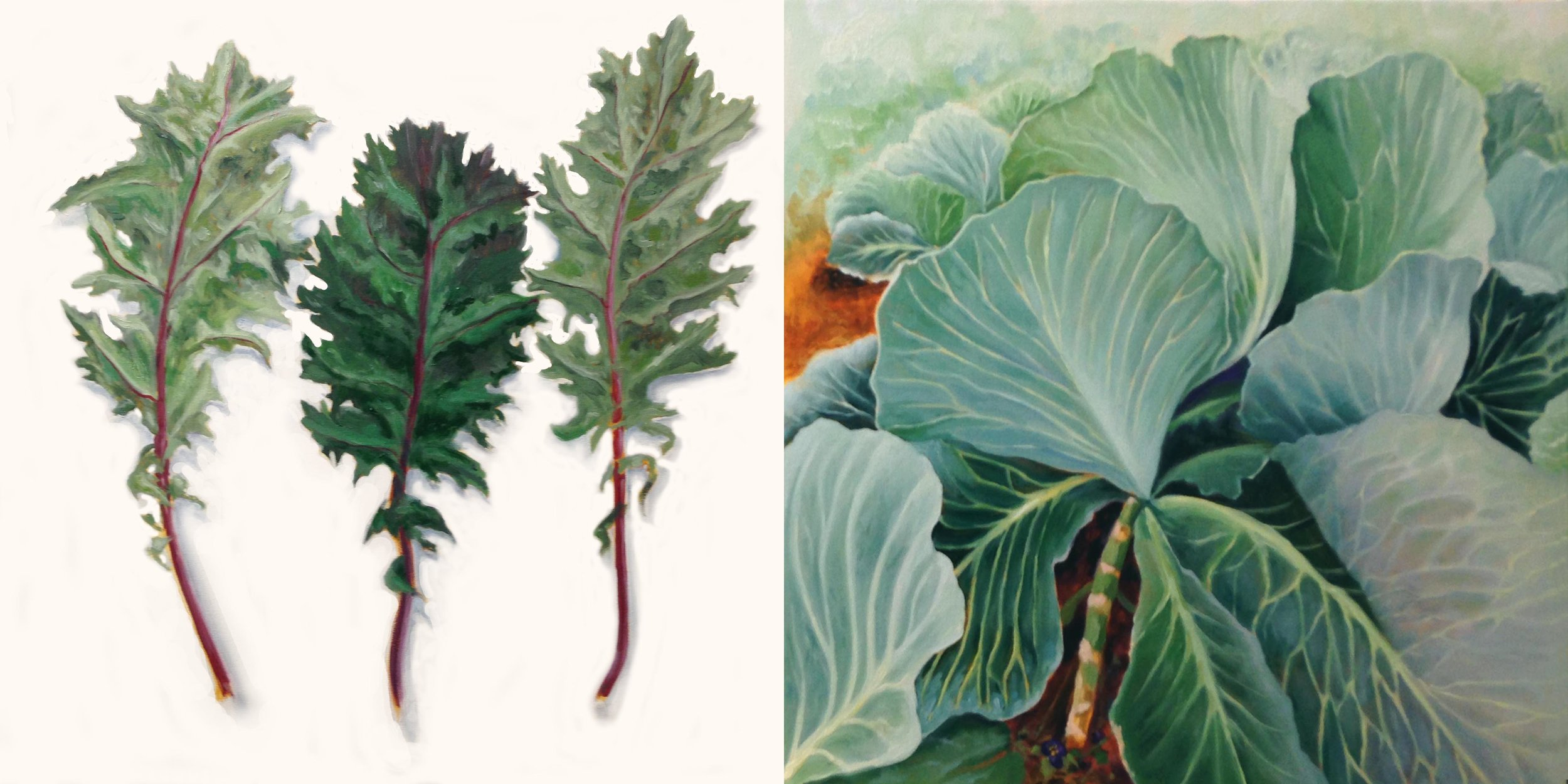 Kale & Cabbage Patch , 2018, oil on canvas, 30 x 60 inches (one canvas)