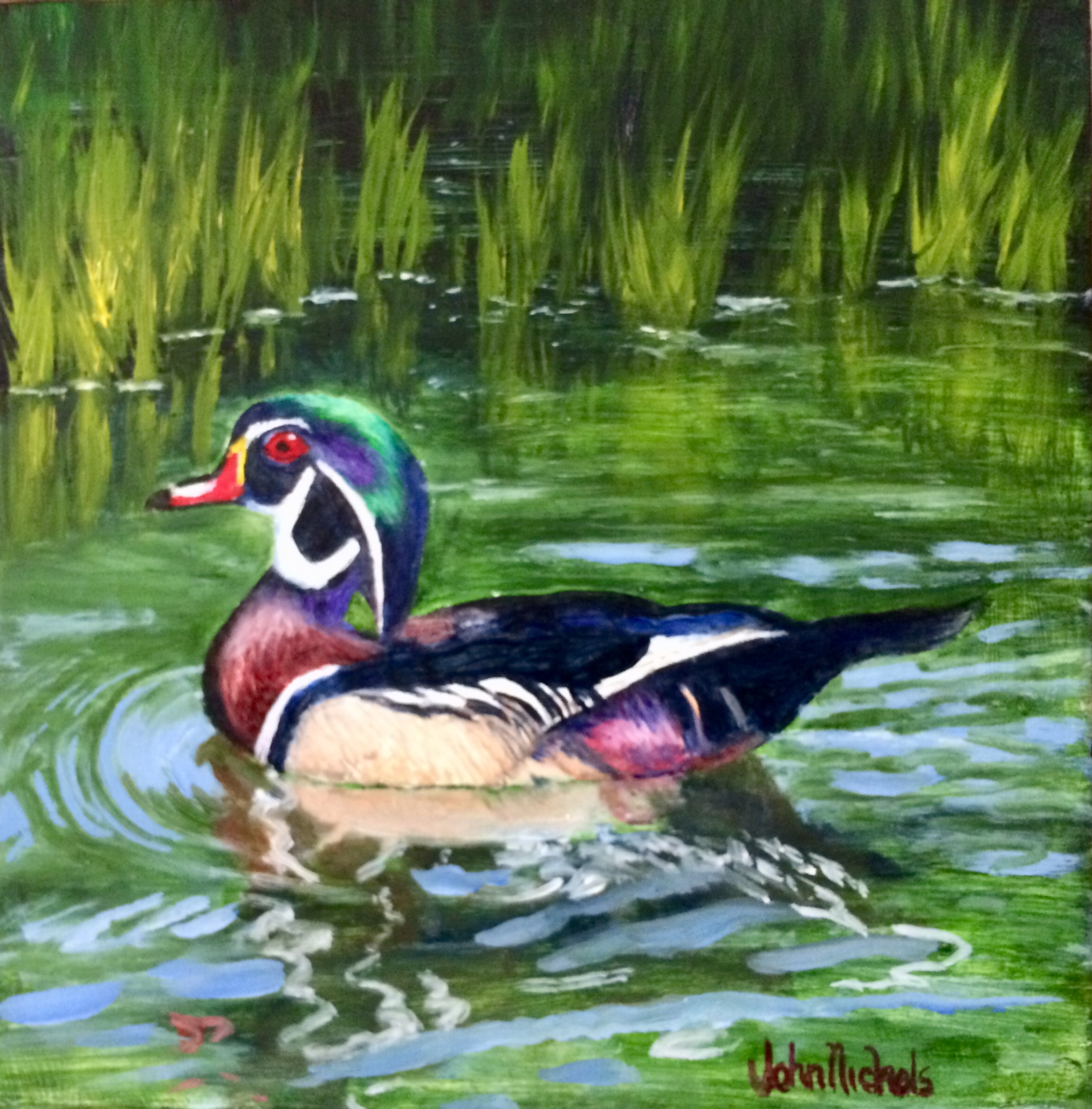 """Yolo Basin Wood Duck"