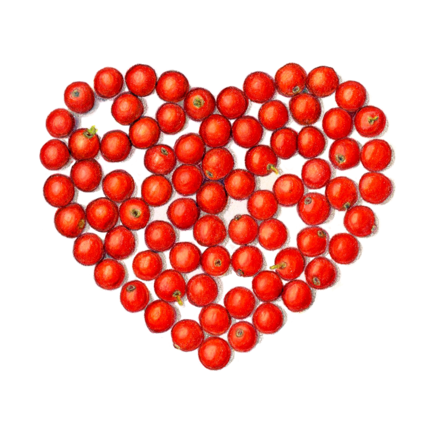 Heart_HollyBerries_crop.jpg