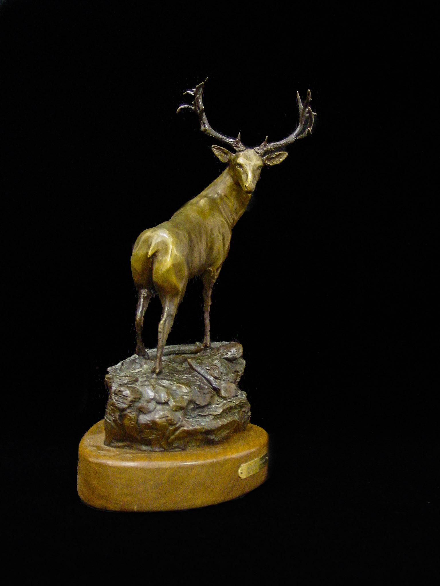 Deer-5.jpg