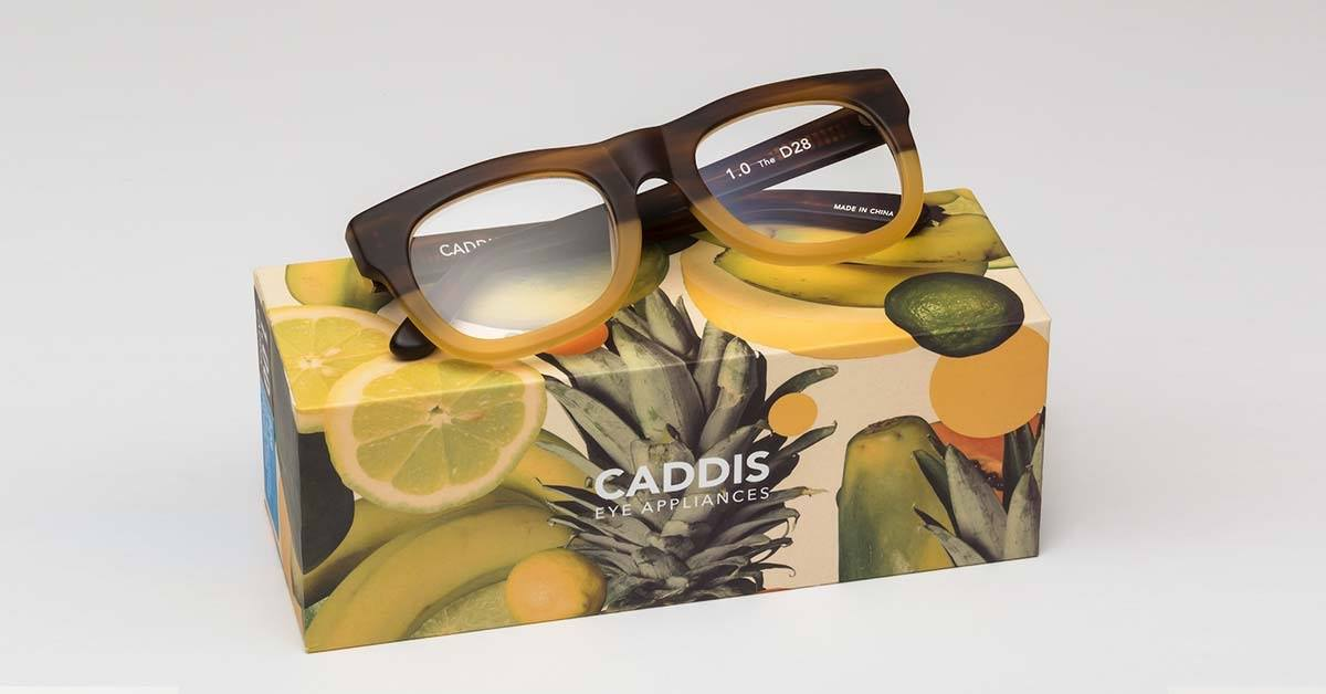 caddis1.jpg