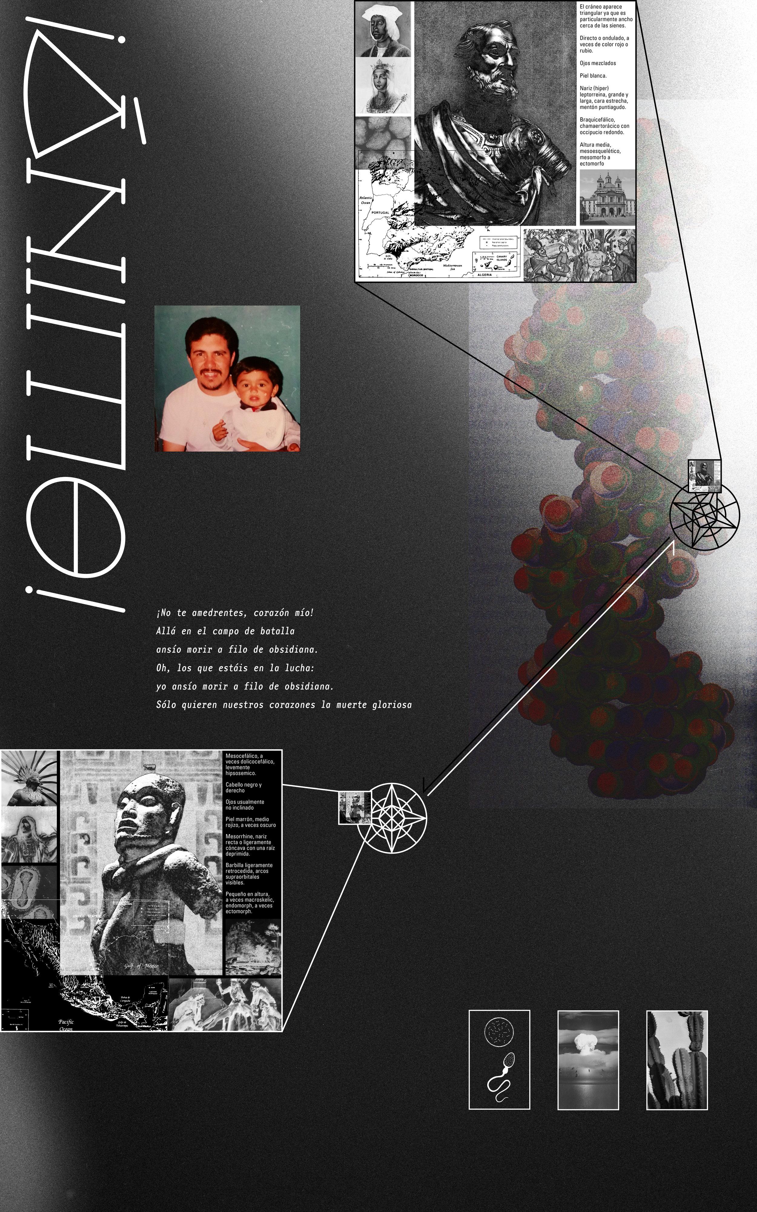 MOLE   Poster Design