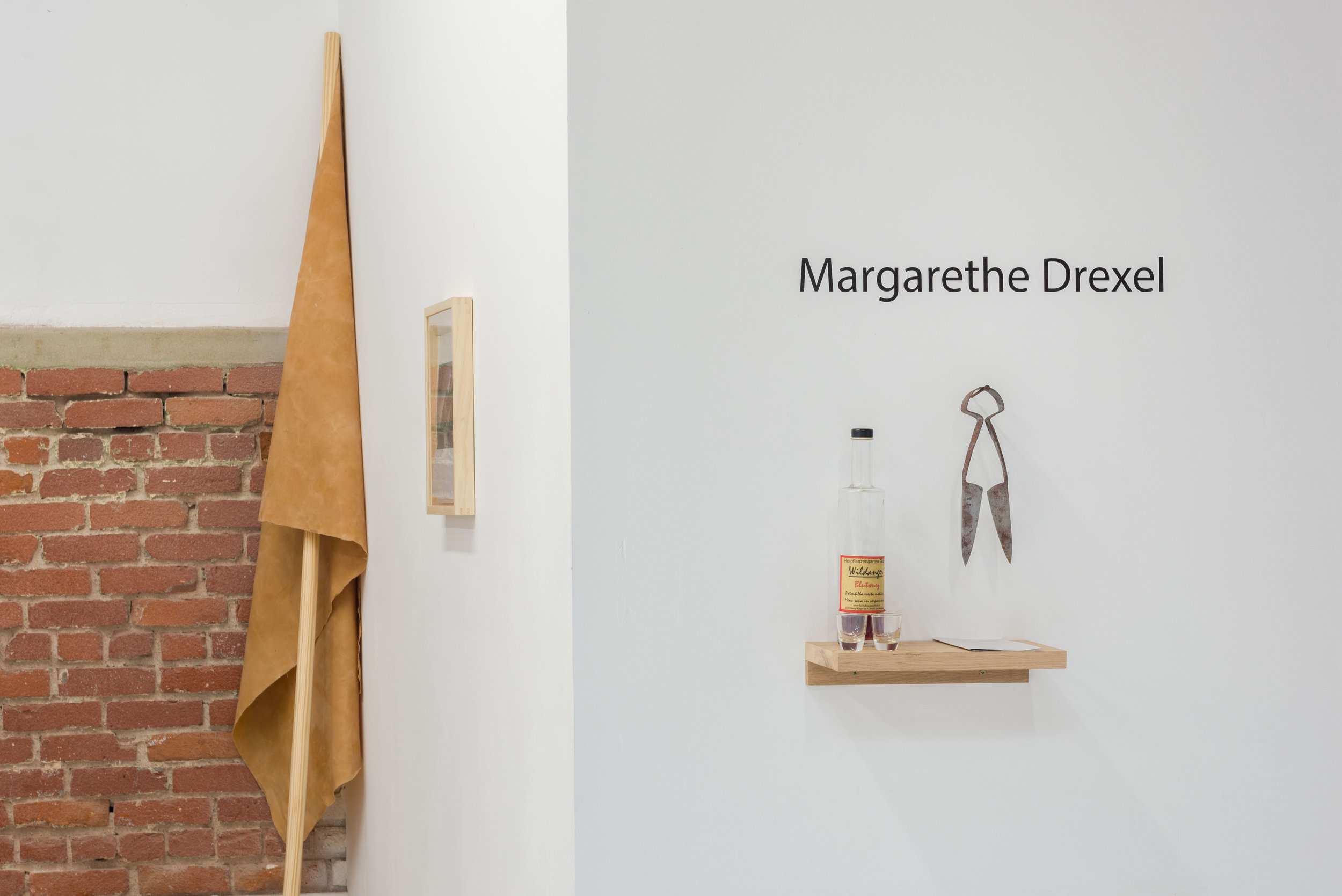 Margarethe Drexel, 'Potentilla erecta.Mens sana in corpore sano.' Installation view, Chimento Contemporary. Photo: Ruben Diaz.
