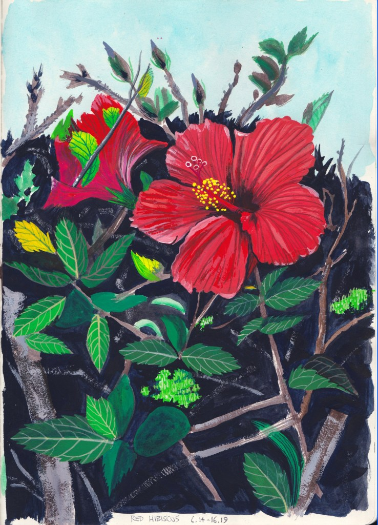 Red Hibiscus 6.14-16.19, 2019