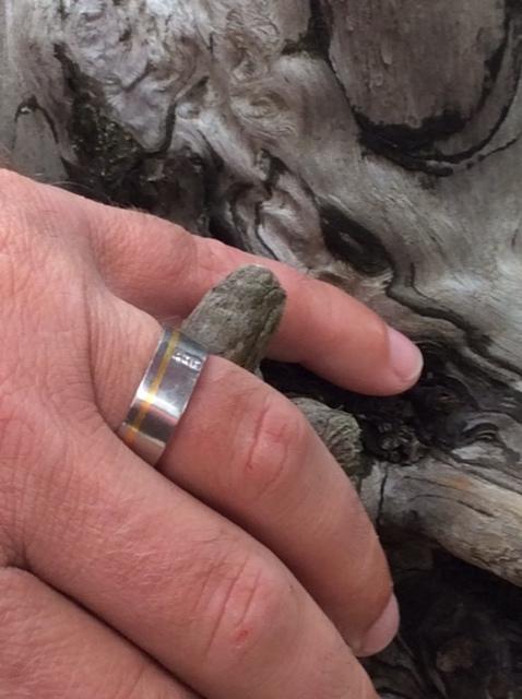 Wayne's ring 2.jpg