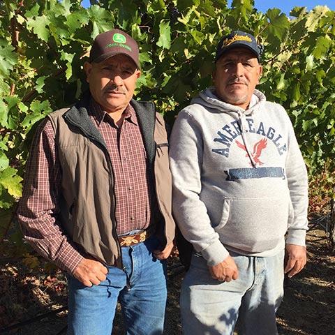 Jesus & Jose Lopez   Farming / Vineyard Operations