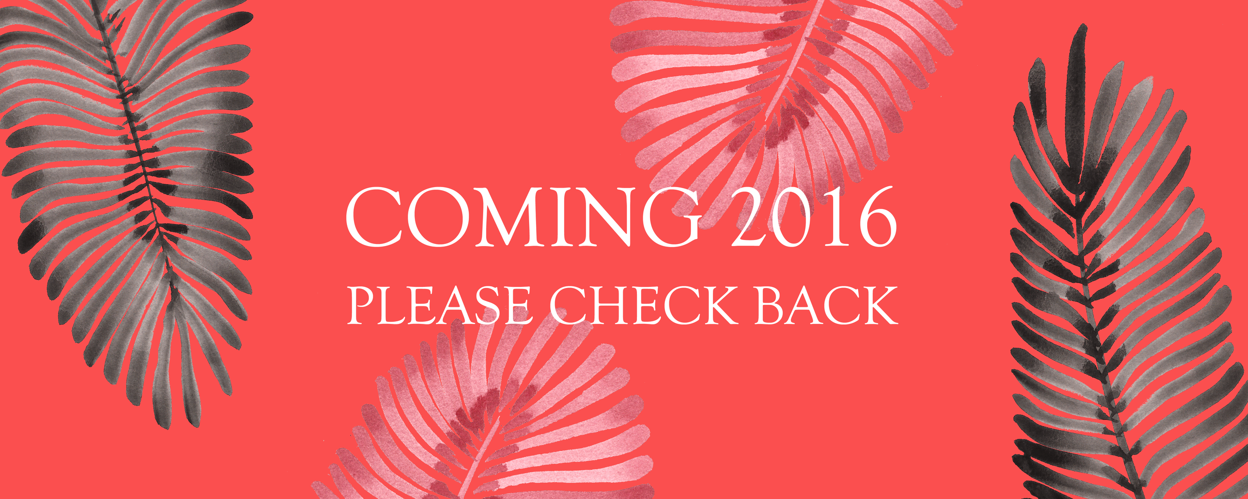 marianneangelirodriguez.com Shop Coming 2016.png