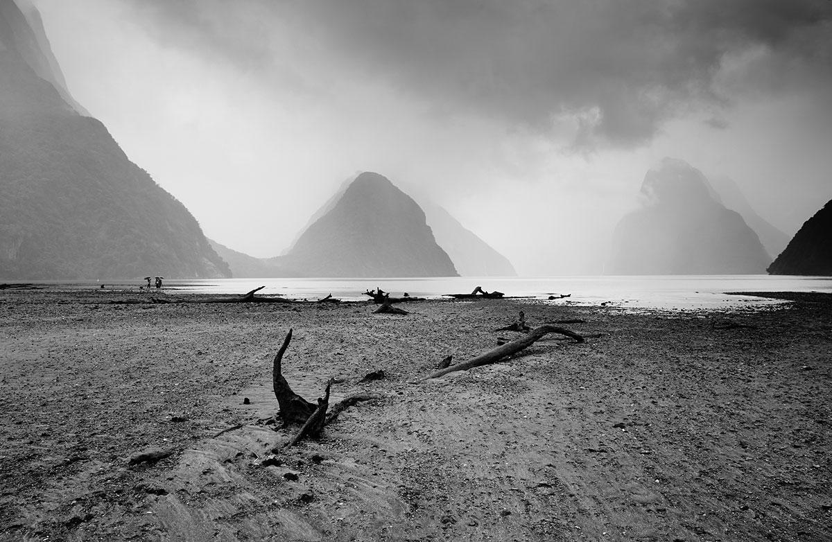 Fiordland-JR--a-046.jpg