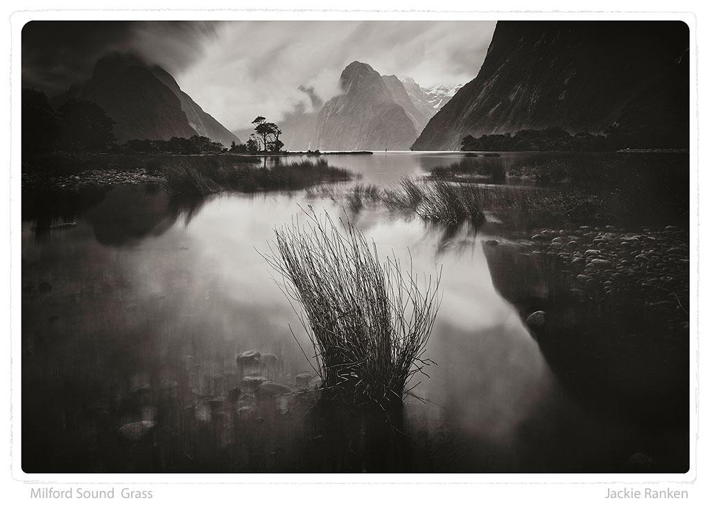 1-Fiordland-Grass-Ranken.jpg