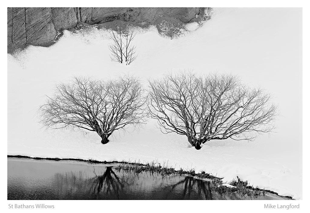 15-St-Bathans-Willows-Langford.jpg