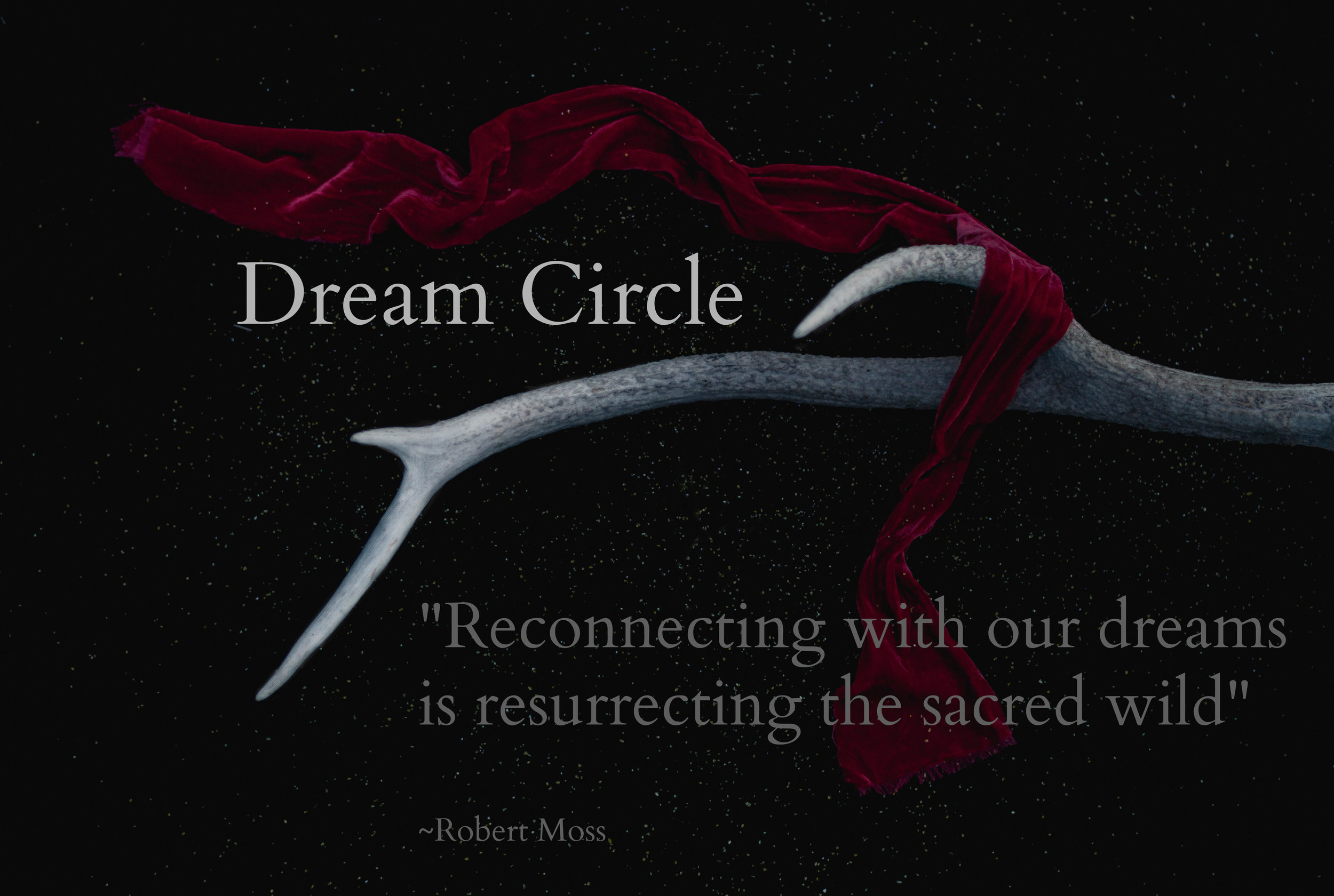Holistic Dream Circle