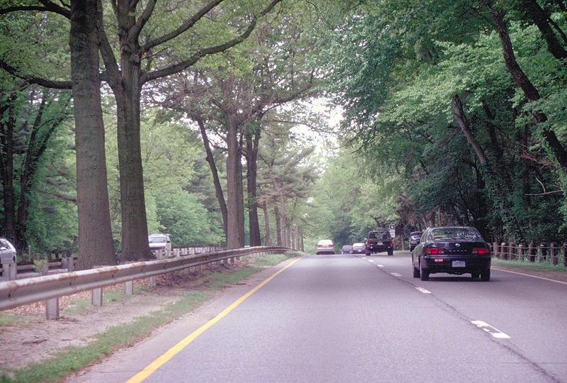 Connecticut's Merritt Parkway in the sprin g.