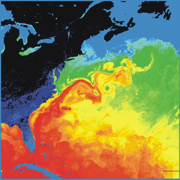 Surface temperatures  in the western North Atlantic. The North American landmass is black and dark blue (cold), while the Gulf Stream is red (warm). Source:  NASA