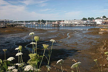 Boothbay Harbor, Maine, during a fragrant low tide.