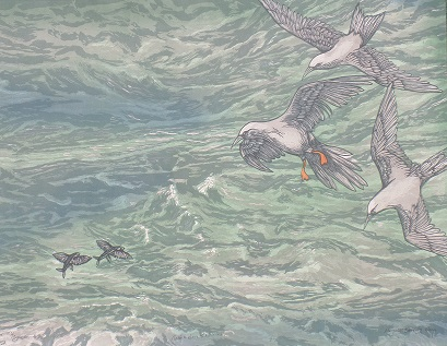 """""""Noddies Above the Waves'' (woodblock print on Stonehenge paper), by Margaret Barnaby,at the Patricia Ladd Carega Gallery,Center Sandwich, N.H."""
