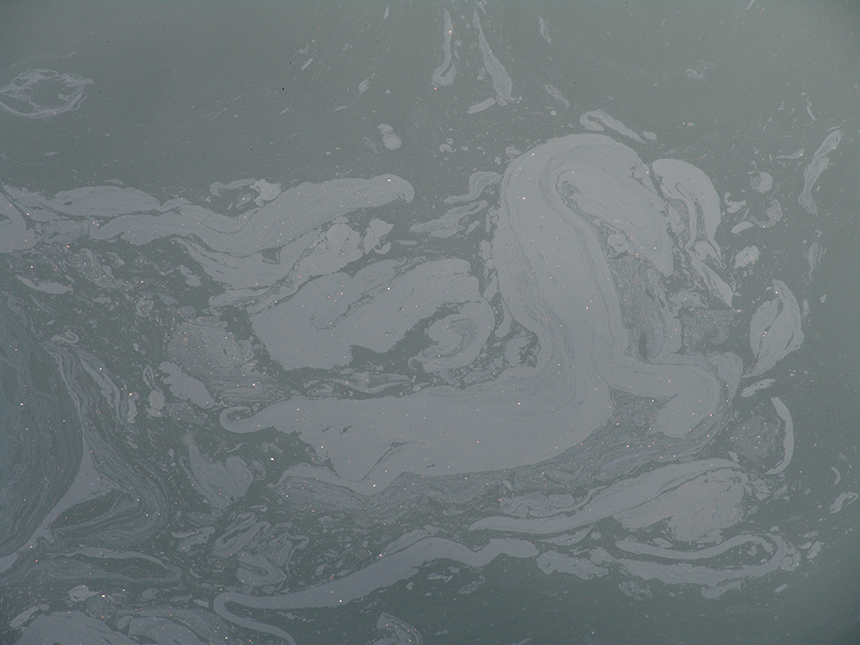 A weirdly beautiful oil sheen on the waters of New Bedford Harbor.    Photo by Frank Carini