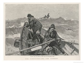 In the 19th Century,  dories were carried aboard larger fishing  schooners , and used for  handlining  cod on the Grand Banks ,  which was heavily harvested by fishermen from Gloucester, Mass.