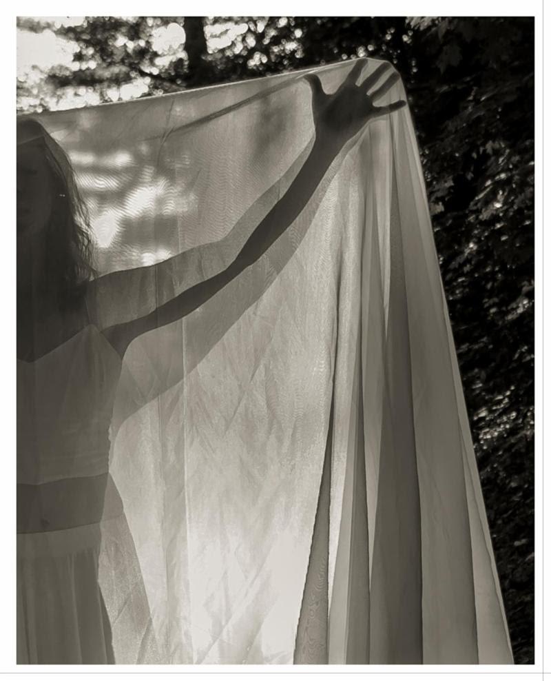 "From David Lee Black's show ""Passage,'' at Galatea Fine Art, Boston Jan. 2-26."