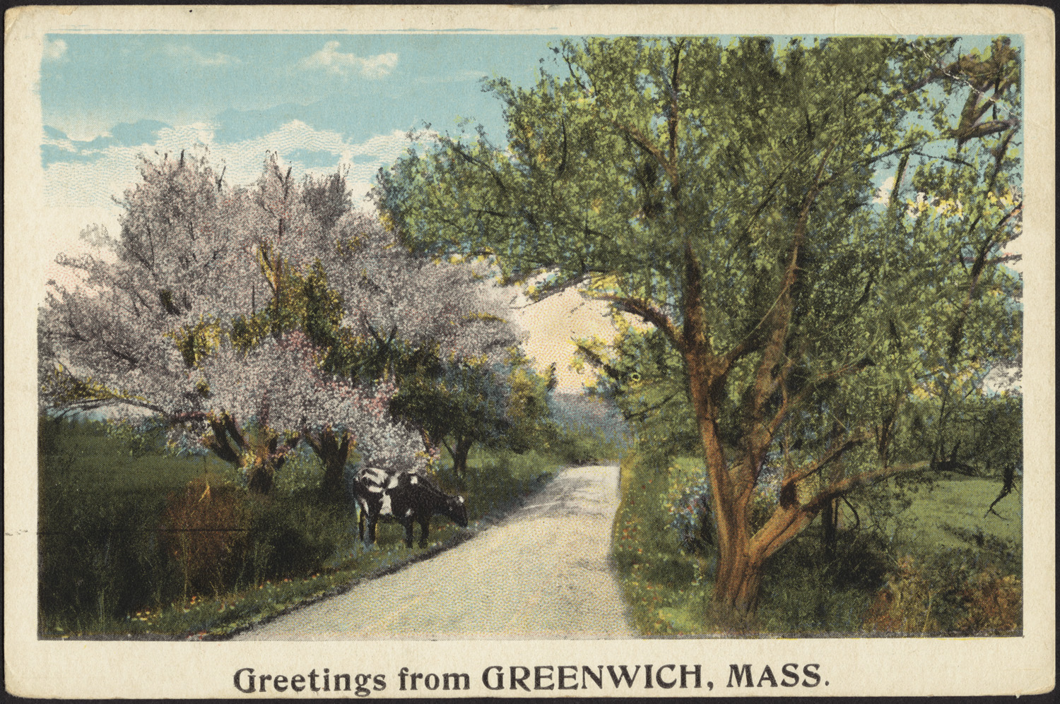 This postcard from the early 1900s depicts the bucolic community of Greenwich, Mass. – one of the four towns lost in the 1930s with the creation of the Quabbin Reservoir .