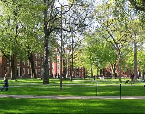 Freshmen dorms at Harvard