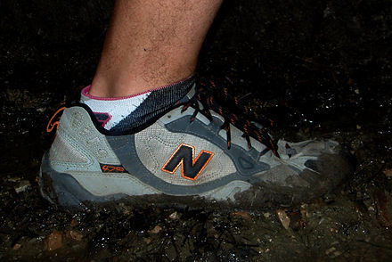 440px-Trail_running_shoes.jpeg